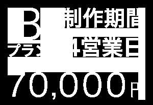 Bプラン、制作期間:3営業日、70,000円